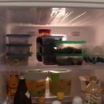 とつげきミズブキ冷蔵庫!