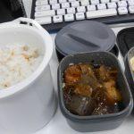 煮物とコールスローサラダのお弁当