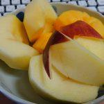 動画「秋の果物」