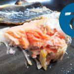 動画「やらかしの焼鮭定食」