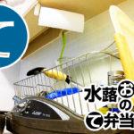 動画「お疲れおじさんの引きこもり皿洗い」
